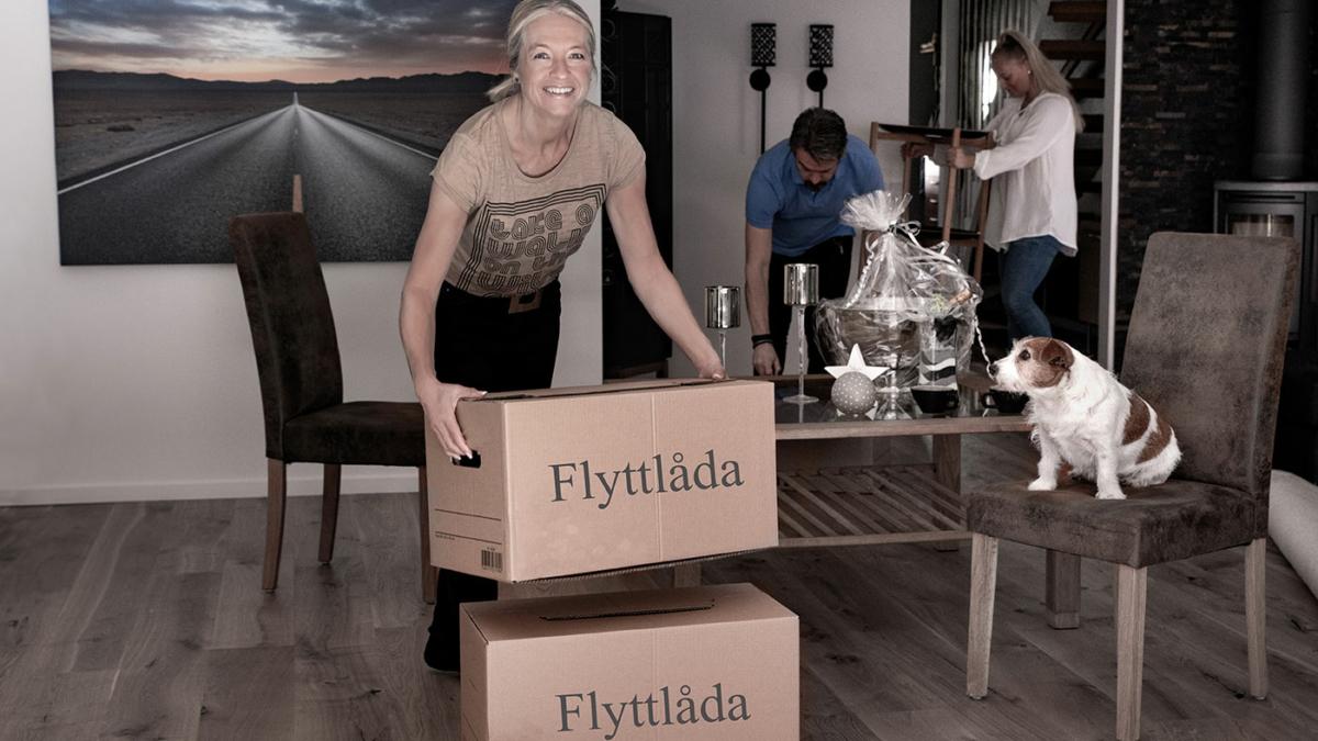 Kvinna bär flyttlådor, hunden sitter på stolen, mannen och flickan flyttar möbler