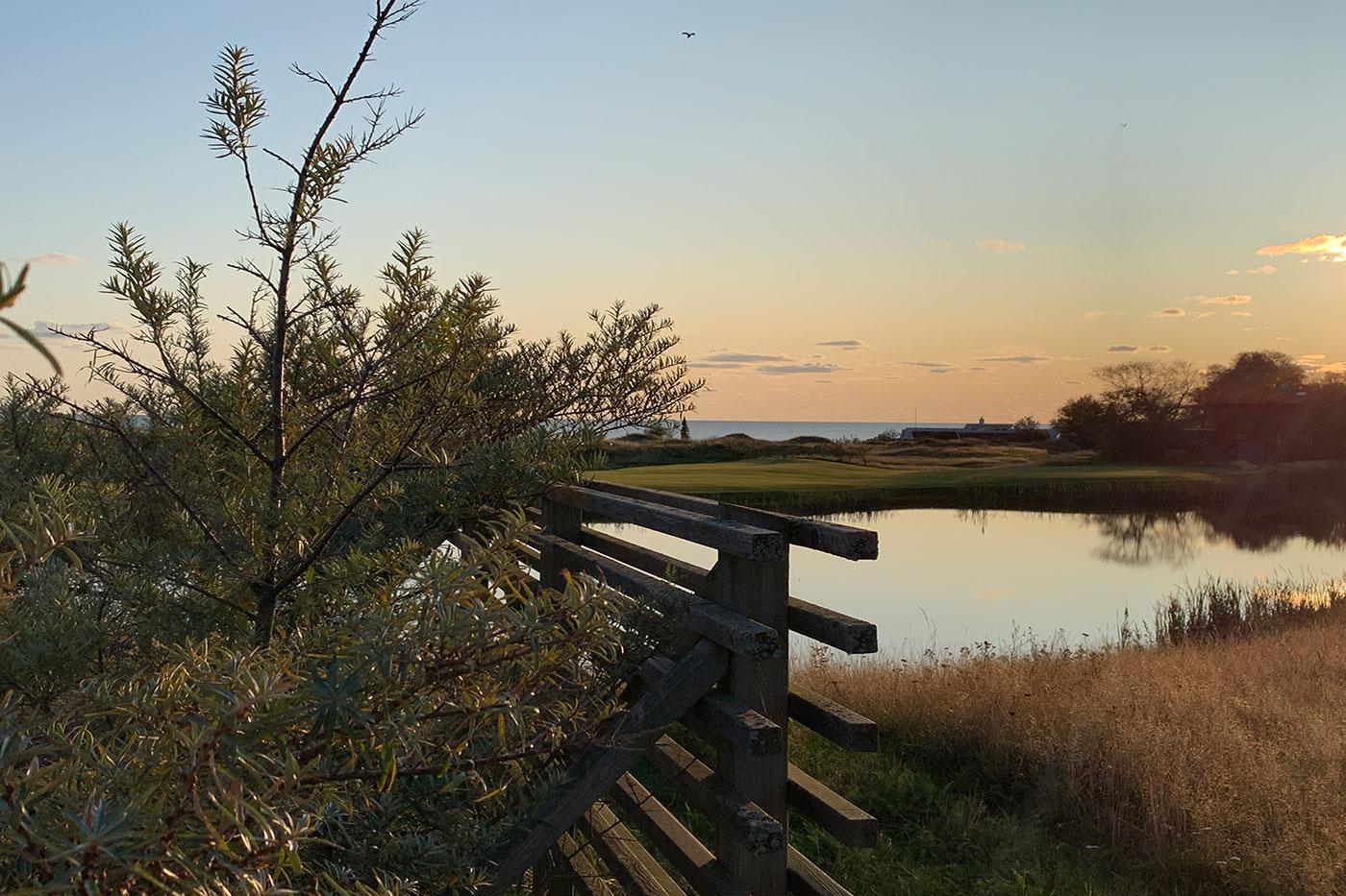 Damm i kvällssol med vy över havet i Ringenäs