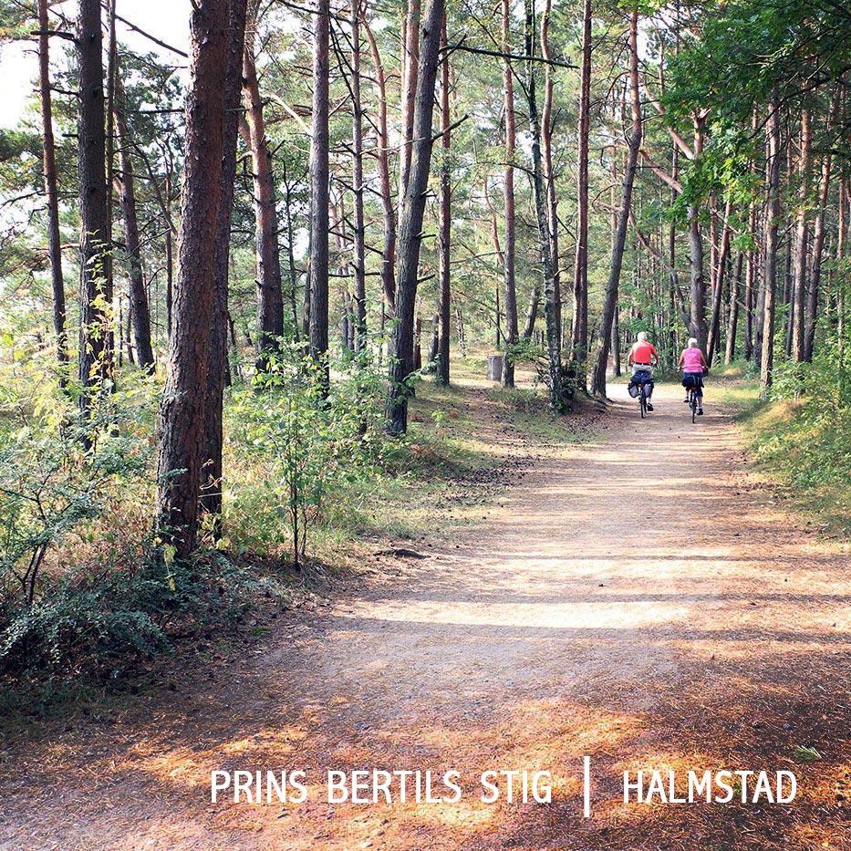 prins bertils stig på cykel smultronställen i Halmstad